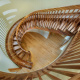 Best Curved Stairway-Traditional by Top Tread Stairways